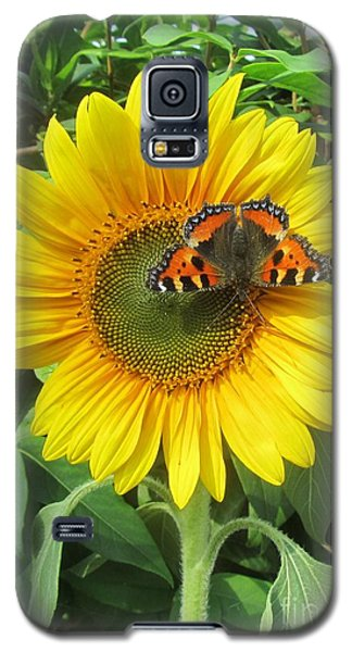 Galaxy S5 Case featuring the photograph Butterfly On Sunflower by Jeepee Aero