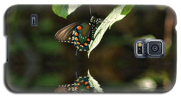 Butterfly Over The River Galaxy S5 Case