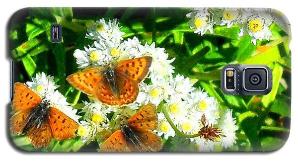 Butterfly Party Galaxy S5 Case by Karen Molenaar Terrell