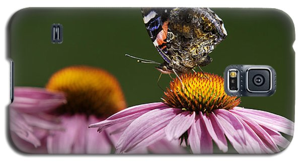 Galaxy S5 Case featuring the photograph Butterfly Red Admiral On Echinacea by Peter v Quenter
