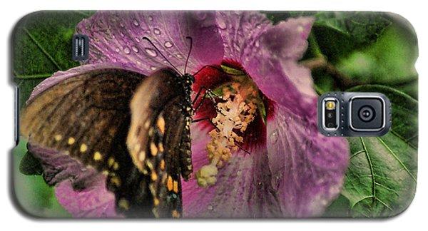 Butterfly Slurpy Galaxy S5 Case by Rick Friedle