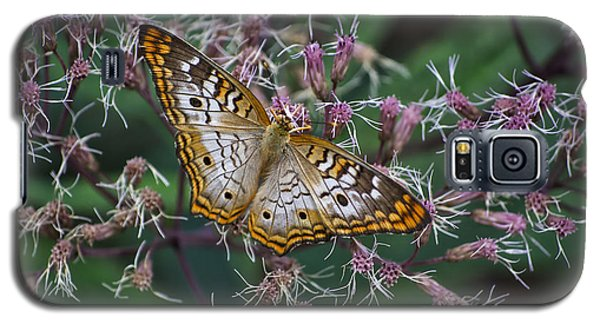 Galaxy S5 Case featuring the photograph Butterfly Soft Landing by Thomas Woolworth