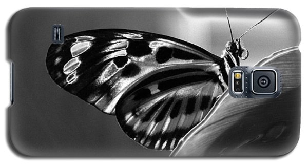 Butterfly Solarized Galaxy S5 Case