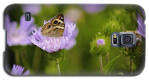 Butterfly Spotlight Galaxy S5 Case