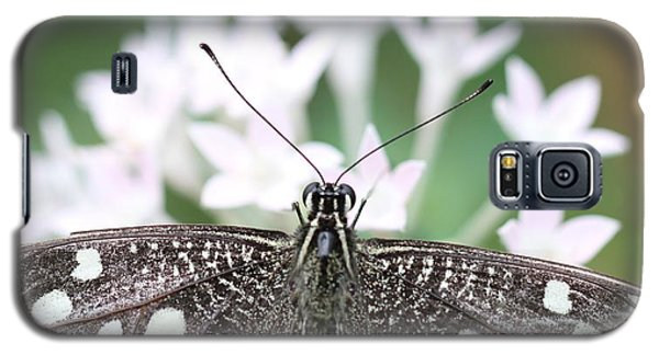Butterfly View Galaxy S5 Case