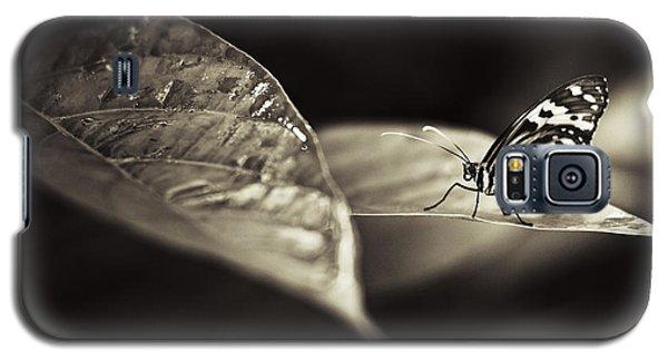 Butterfly Warm Tone Galaxy S5 Case