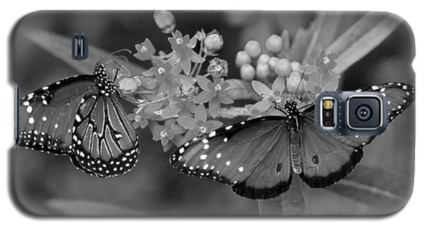 Butterflys Galaxy S5 Case