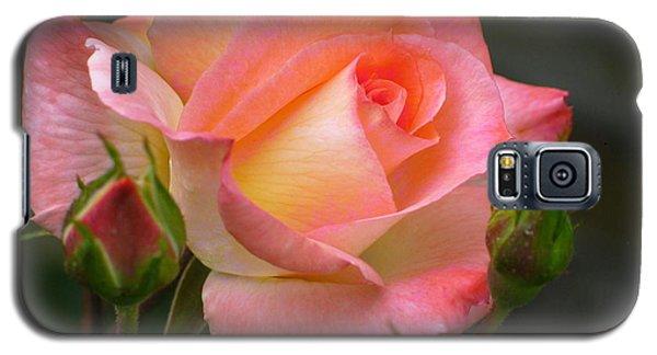 Buttermilk Pink Galaxy S5 Case