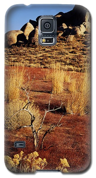 Buttermilks - Red Brush Galaxy S5 Case