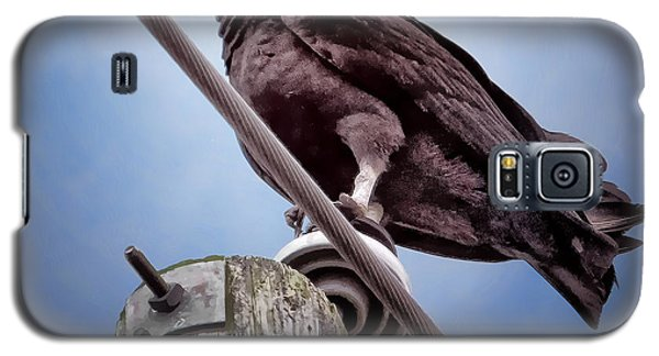 Buzzard Beauty Galaxy S5 Case