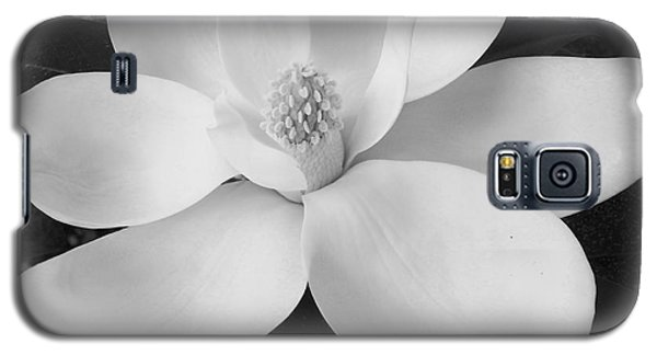 B W Magnolia Blossom Galaxy S5 Case by D Hackett