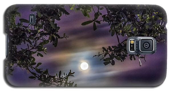 By The Moonlight Galaxy S5 Case by Rob Sellers