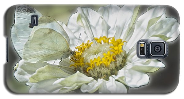 Cabbage White Butterfly On Zinnia 2 Galaxy S5 Case