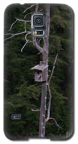Cabin On Mud Lake Galaxy S5 Case