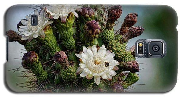 Cacti Bouquet  Galaxy S5 Case