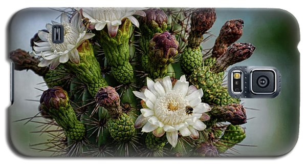 Cacti Bouquet  Galaxy S5 Case