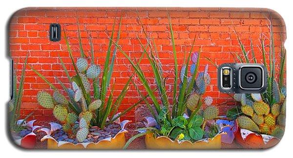 Cacti Quartet Galaxy S5 Case