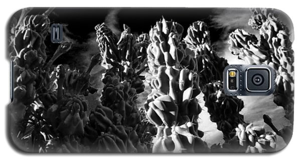 Galaxy S5 Case featuring the photograph Cactus 1 Bw by Mariusz Kula