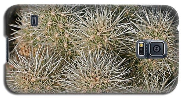 Cactus 14 Galaxy S5 Case