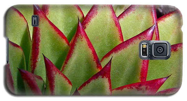Cactus 3 Galaxy S5 Case