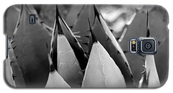 Cactus 5 Galaxy S5 Case