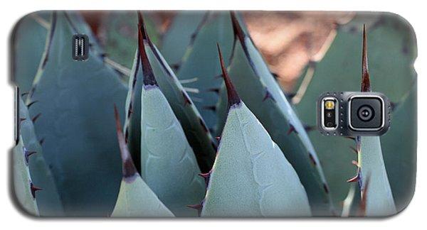 Cactus 6 Galaxy S5 Case
