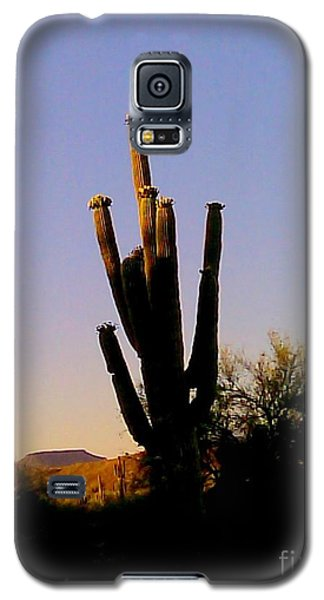 Galaxy S5 Case featuring the photograph Cactus At Sundown by Fred Wilson