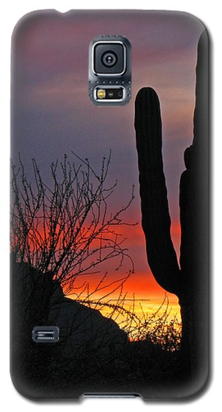 Galaxy S5 Case featuring the photograph Cactus At Sunset by Marcia Socolik