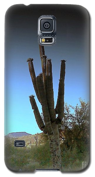 Galaxy S5 Case featuring the photograph Cactus At Twilight by Fred Wilson
