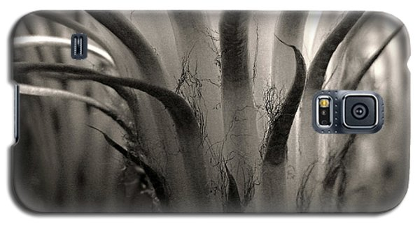 Cactus Bloom In Sepia Galaxy S5 Case