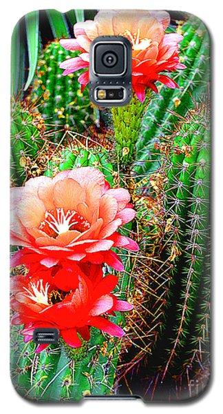 Cactus Blooming Arizona Desert Galaxy S5 Case