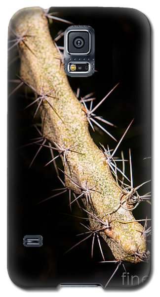 Galaxy S5 Case featuring the photograph Cactus Branch by John Wadleigh
