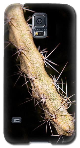 Cactus Branch Galaxy S5 Case