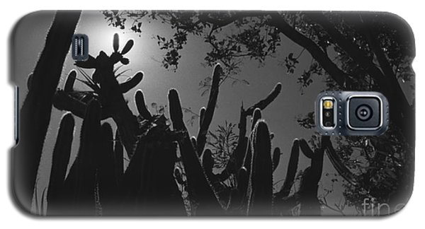 Galaxy S5 Case featuring the photograph Cactus Family by Kenny Glotfelty
