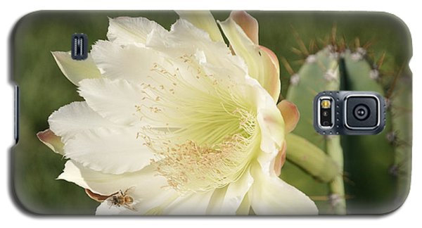 Cactus Flower And Bee Galaxy S5 Case