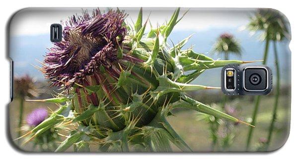 Cactus Flower Galaxy S5 Case