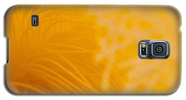 Cactus Flower Stamens Galaxy S5 Case by Jani Freimann