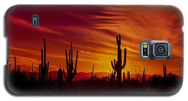 Cactus Glow Galaxy S5 Case by Mary Jo Allen