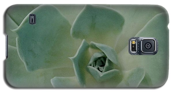 Cactus Heart Galaxy S5 Case