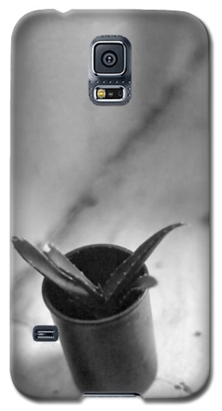Galaxy S5 Case featuring the photograph Cactus In A Film Can by Bob Wall