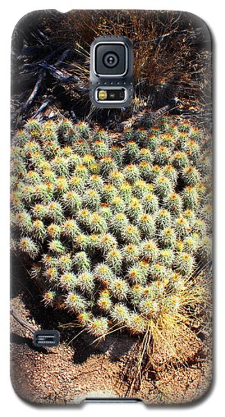 Galaxy S5 Case featuring the photograph Cacti Need Love Too by Natalie Ortiz