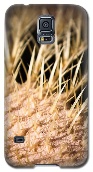Cactus Skin Galaxy S5 Case