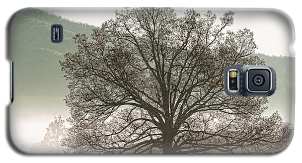 Galaxy S5 Case featuring the photograph Cades Cove Tree by Phyllis Peterson
