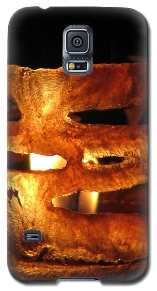 Caged Flame Galaxy S5 Case