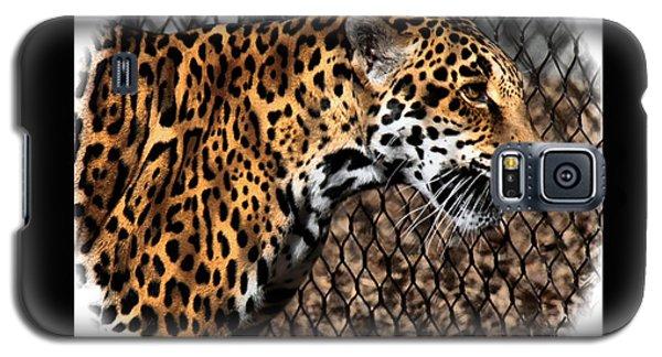 Caged Jaguar Galaxy S5 Case