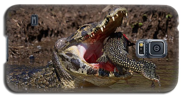 Caiman Vs Catfish 1 Galaxy S5 Case