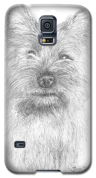 Galaxy S5 Case featuring the drawing Cairn Terrier by Jim Hubbard