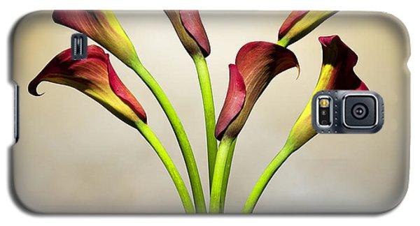 Lily Galaxy S5 Case - Cala Lily 5 by Mark Ashkenazi