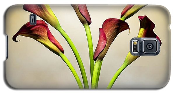 Lily Galaxy S5 Case - Cala Lily 5 by Mark Ashkenazi