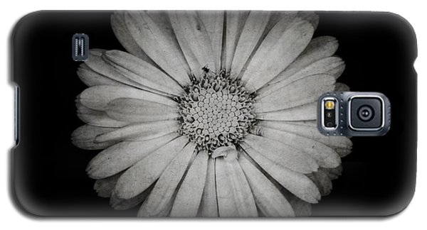 Galaxy S5 Case featuring the photograph Calendula Flower - Textured Version by Laura Melis